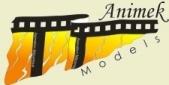 Animek Logo